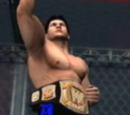 New-WWE Hell in a Cell 4