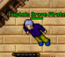 Captain Brave Pirate
