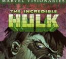 Hulk Visionaries: Peter David Vol 1 3