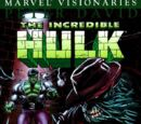 Hulk Visionaries: Peter David Vol 1 7
