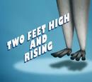 На двух ногах и выше