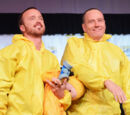 Bchwood/Breaking Bad Interview