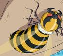 Glass Bee