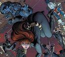 Secret Avengers Vol 1 29