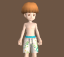 Guy Swimsuit Bottom