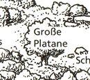 Große Platane