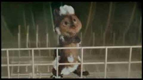 Alvin (ohne die Chipmunks) beim Duschen