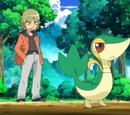 Trip's Pokémon
