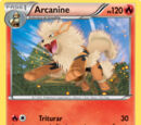 Arcanine (Próximos Destinos 13 TCG)