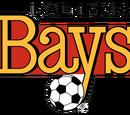 Defunct soccer teams in USA