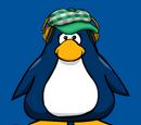 Green Indie Hat