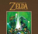Bowser & Jr./Hyrule Historia Confirmed for Western Release Under the Title - The Legend of Zelda: Hyrule Historia!
