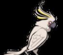 Wrogowie z angry birds rio