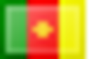 CameroonFlag.png