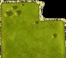 Large fertile meadow