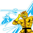 Bronze Tiger 0001.jpg