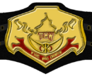TCW* Fire Pro Championship