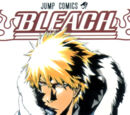 Bleach Chapters 424 – current