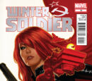 Winter Soldier Vol 1 10