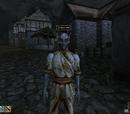 Morrowind: Personen: Männlich