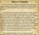 A Beginner's Guide to Transfiguration/Match to Needle