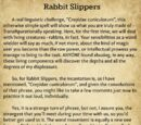 A Beginner's Guide to Transfiguration/Rabbit Slippers