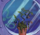 SpongeBob's peanut plant