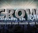 Crow Reunion in Iran