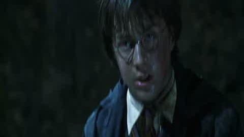 Harry Potter and the Chamber of Secrets - Killing the Basilisk