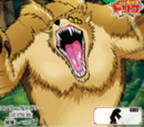 Bear Beasts