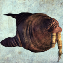 Walrus render.png
