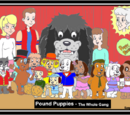 Puppy Power-Pedia: Database and Fanbase of the 1980's Pound Puppies