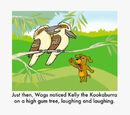 Kelly the Kookaburra