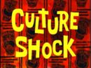Culture Shock.jpg