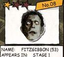 Mr. Fitzgibbon