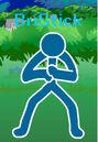 BriStick's Character Pose.jpg