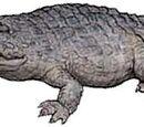Redondasaurus