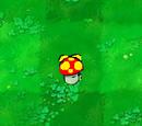 Flying Mushroom