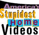 America's Stupidest Home Videos