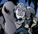 Young Justice Vol 2 18/Images