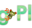 Frog Place