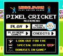 Pixel Cricket