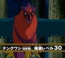Tengu Hawk