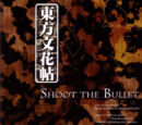TH09.5-Shoot the Bullet