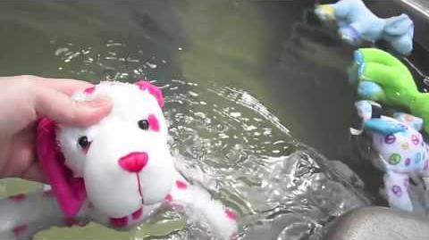 Pool Party with Webkinz Puppies )