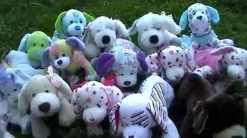 All My Webkinz Puppies (Requested)