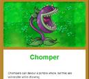 Chomper/Gallery