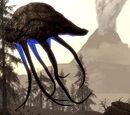 Morrowind: Regionen