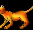 Amberflame