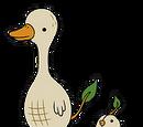 Pato de Nuez
